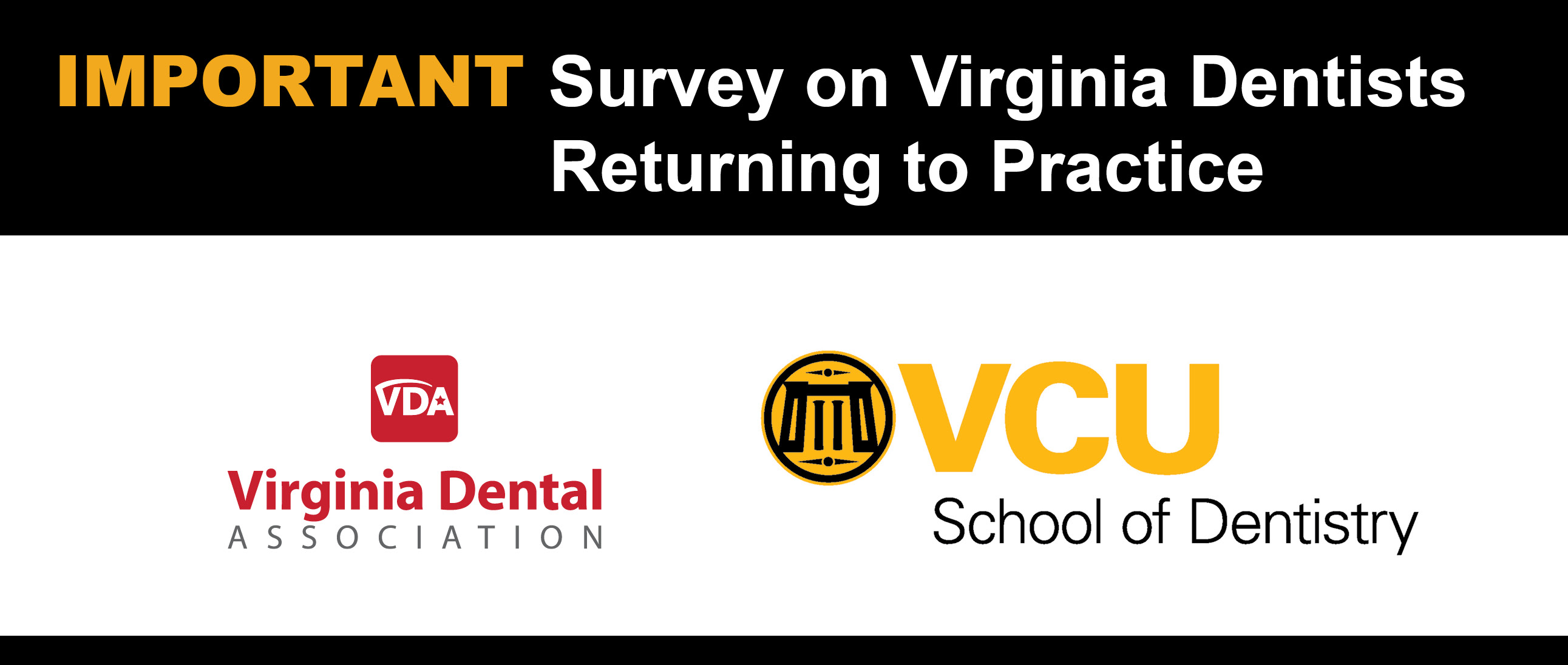VCU Survey